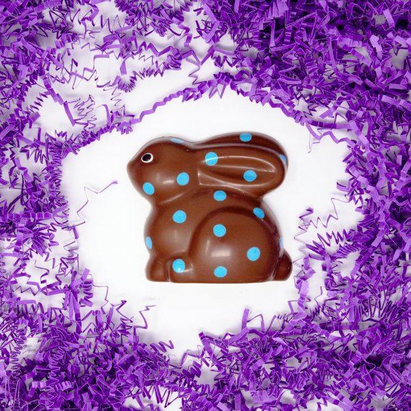pola dot bunny in solid milk chocolate