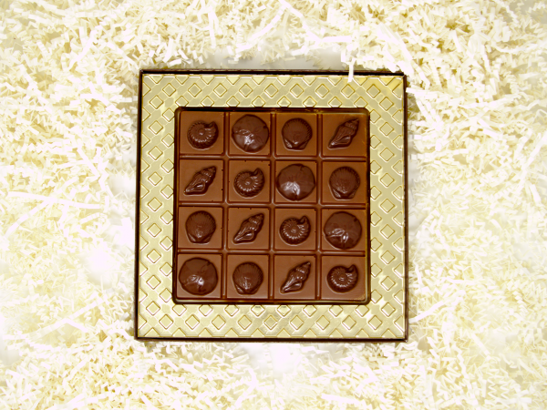 milk chocolate seashell breakaway bar in gold gift box